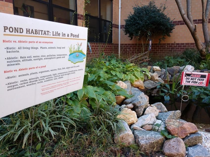 pond habitat sign leesville middle