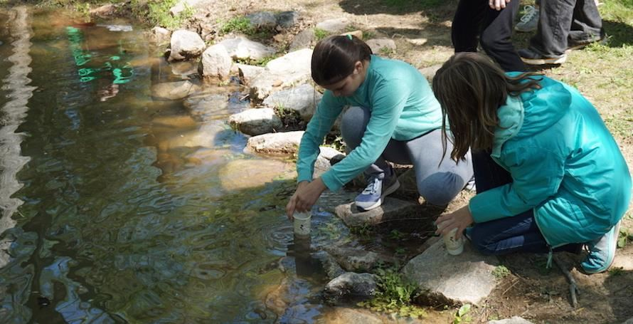 Abbotts Creek students test water quality in a creek.