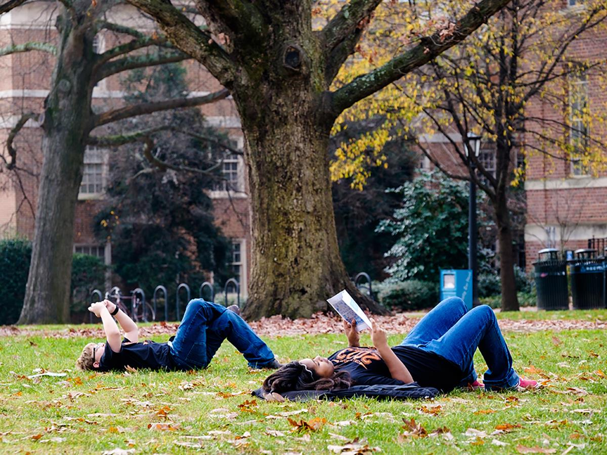 Photo of students reading in the grass under a large tree.