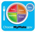ChooseMyPlate.gov Plate with Fruits, Grains, Vegetables, Protein,Dairy