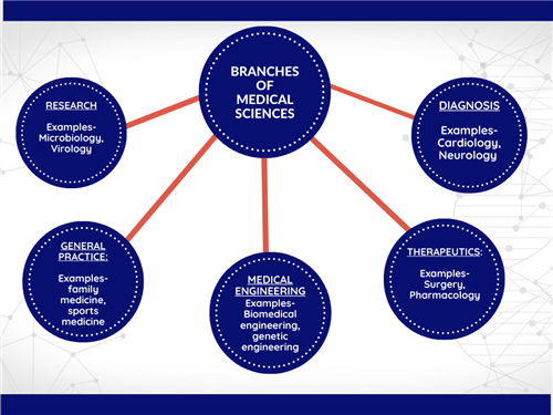 Branches of Medical Sciences
