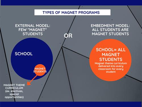 Types of Magnet Programs