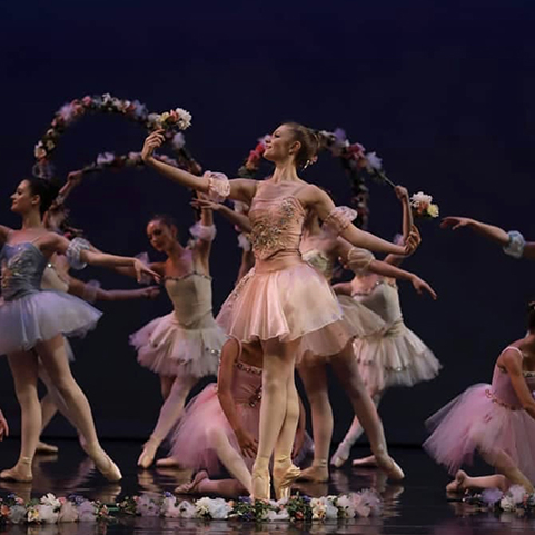 photo of ballet performance