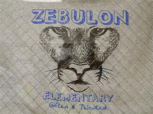 Zebulon Elementary Gifted and Talented