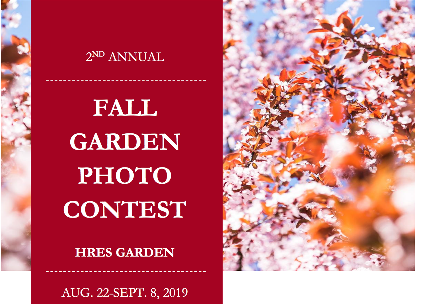 2nd Annual Fall Garden Photo Contest!