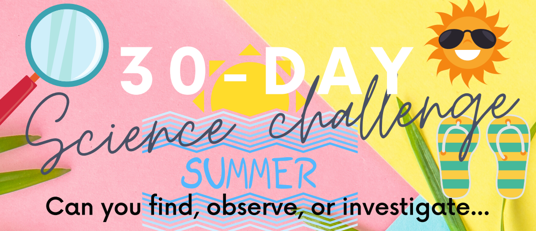 Science Summer Challenge
