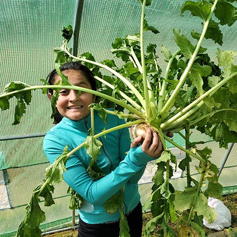 photo of a girl holding a vegetable