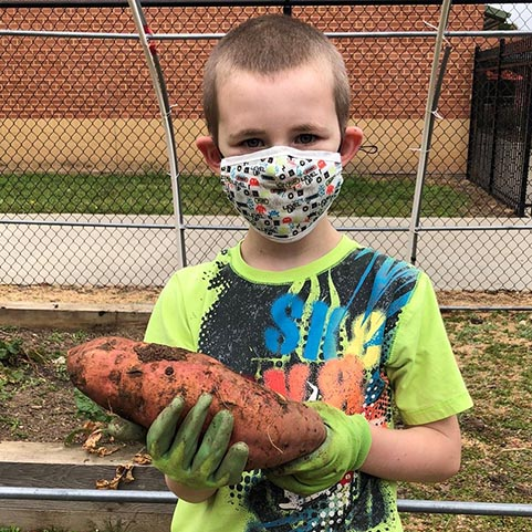 boy holding a sweet potato