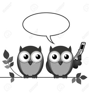 image of two owls on a branch, one has a phone and an empty speech bubble