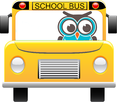 owl driving bus